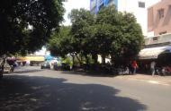 Bán nhà 33 Nguyễn Đình Chiểu diện tích 1500m2 phường Đa Kao quận 1