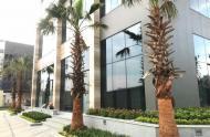 Bán giá gốc căn 3 phòng ngủ Vinhomes Golden River, CK 1.3 tỷ, tặng Tivi 300 triêu, tặng 10 năm PQL