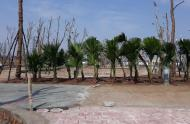 Bán đất liền kề dãy lâm viên 2 dự án TNR Đồng văn 123m2 giá 871 triệu/lô