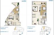 Cho thuê căn hộ tòa nhà Sailing Tower