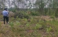 Đất chính chủ tại Phước Bình Long Thành 4000m2 giá 1,3 tỷ
