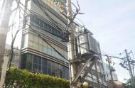 Bán nhà mặt tiền đường Trần Quý Khoách, Phường Tân Định, Quận 1 giá 36 tỷ