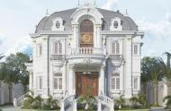 Bán biệt thự mặt phố tuyệt đẹp đường Phan Kế Bính quận 1, DT 9.5x27.5m. 1 căn duy nhất giá rẻ