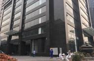 Cho thuê showroom-sàn thương mại Nguyễn Văn Huyên kéo dài 2400m2 x2t mt:65