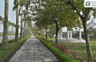 Tư vấn mua bán đất nền biệt thự, nhà vườn dự án Vườn Cam - Vinapol