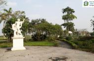 Tư vấn mua bán biệt thự Vườn Cam - Vân Canh, Hoài Đức, Hà Nội