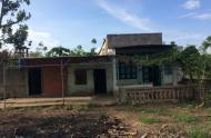 Chính chủ cần bán 2 lô đất liền kề ở Xã Lộc Thịnh, Huyện Lộc Ninh, Bình Phước
