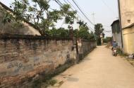 Vâng! một mảnh đất tiềm năng ở thôn Dương Đanh Gia Lâm