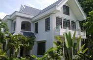 Chính chủ bán gấp biệt thự Trần Khắc Chân, Quận 1 (10,5x19,5m). Giá 38,5 tỷ