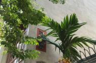 Bán nhà đẹp –Hoàng Văn Thái 108m2 mặt tiền 6m, giá:9.2 tỷ.