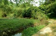Chuyển nhượng 9000 m đất thổ cư làm trang trại tại thành phố hòa bình