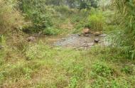 Chuyển nhượng 300 ha đất 50 năm tại tỉnh hòa bình