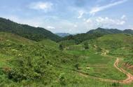 Chuyển nhượng 285 ha đất rừng sản xuát tại huyện mai châu tỉnh hòa bình